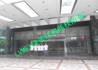 深圳亚洲酒店治理工程